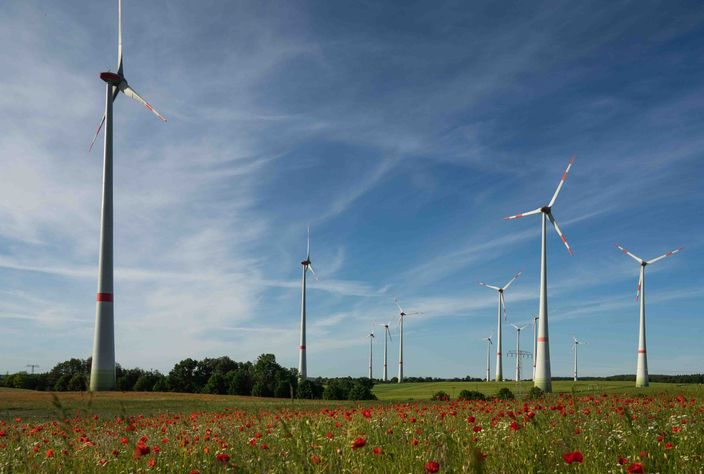 Beteiligung an Windkraft